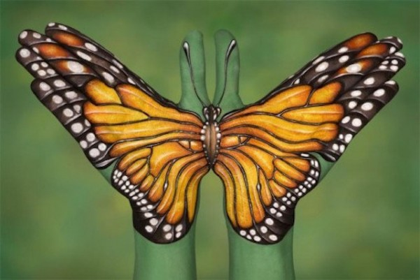 Monarch-Buttefly-600x401